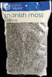 Gothic Cemetery Prop Natural SPANISH MOSS Haunted House Halloween Decoration Decorative natural Spanish moss is a must for all your Halloween centerpieces, decorations and displays! Add a musty, moldy look to cemetery graveyard scene