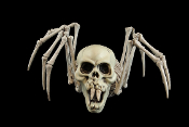Mutant FANG VAMPIRE SKELETON SPIDER Human Skull Head Creepy Mutated Creature Gothic Haunted House Prop. Ghoulish frightfully fiendish decor. Discount Halloween decorations, cheap Halloween props, wholesale Horror prop building supplies at Horror-Hall