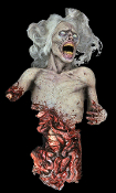 DIE ZOMBIE DIE! ANIMATED Halloween Haunted House Horror Prop - This zombie twitches and moans in pain but just won't die! Foam-filled body with metal armature and heavy duty motor. All electric. Soundtrack CD is included. You provide CD player