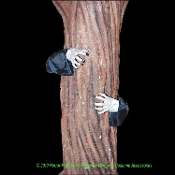 Creepy Life Size Realistic Poseable ZOMBIE HANDS TREE DECOR ARMS Haunted House Cemetery Graveyard Wrap Fence Post Hugger Halloween Prop Building Yard Decoration Cosplay Costume Accessory. Looks like a scary monster is reaching around to attack you!