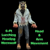Life size deluxe scary animated Werewolf classic horror character is a creepy addition to any Halloween haunted house. Looming 6-FT tall animatronic prop has head with side to side movement. He lunges forward at you and his arm raises up to grab you!