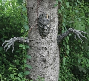 Realistic Spooky LIVING TREE MAN DECOR HAUNTED FOREST PROP Creepy Halloween Indoor Outdoor Graveyard Cemetery Yard Decoration - Make yard trees look alive! Scary Creature Head Branch Arms SET will give your tree a frightful character. Molded plastic.