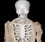 Cheap Wholesale Discount ANIMATED Fake Human Anatomy SKELETONS, Faux Skeleton, Halloween Moving Mouth Phony SKULLS, Electronic Battery Operated, Sound Motion Activated Animatronics Props Haunted House Decorations Replica Body Remains with Movement.