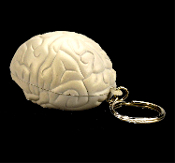 Funky Mini Foam SQUISHY ZOMBIE BRAIN KEYCHAIN Stress Reliever Novelty Toy Human Anatomy Medical Genius Walking Dead Theme Body Part Shape Miniature Organ Morgue Autopsy Key Holder-Doctor Nurse Surgeon Paramedic Smart Geek Nerd Costume Accessory-GRAY