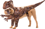 Cheap Wholesale Discount PET COSTUME- Creepy Dog, Cat, Spooky Halloween, Christmas, St Patricks, Valentines Day, Easter, Patriotic, Novelty Fancy Dress ANIMAL COSTUMES Funny Family Pets Holiday Theme Accessories