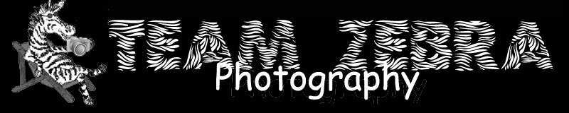 Visit TEAM ZEBRA PHOTOGRAPHY on SmugMug to view thousands of fun photos of sports events, action shots, family gatherings and memorable times. Great prices for original photos, mugs, t-shirts, accessories & gifts!