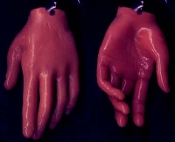 Body Part HAND FINGERS EARRINGS Funky Realistic Dexter Jewelry-AA