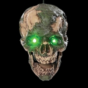 Cheap Wholesale Discount ANIMATED Animatronics Light-up Lighted Spooky Sounds Dismembered Severed Cut-Off HEADS Haunted House Props Halloween Decorations