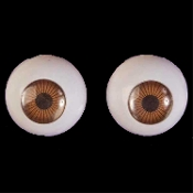 Life Size Creepy Cheap Economy 3d EYEBALLS EYES-BROWN-Gross Dimensional Novelty Doll Skeleton Monster Anatomy Body Parts-Budget Halloween Haunted House Horror Prop Building Crafts. Zombie Costume Accessory. Doctor, Nurse, Optician, keep an eye out!