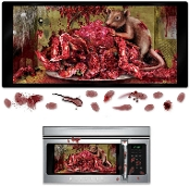 Gory Cannibal Dexter Laboratory Body Parts BLOODY RAT EXPLOSION HORROR MICROWAVE DOOR COVER DECAL GRABBER CLING STICKER Rodent Infestation Psycho Chop Shop Dead Body Kitchen Bar Haunted House Window Prop Halloween Wall Decoration-Murder Scene Setter.