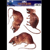 Creepy Gothic Horror Realistic Dimensional 3D-RATS RODENTS ATTACK INFESTATION-Spooky Halloween Haunted House Prop Scary Party Decoration Bathroom Mirror Window STICKY CLING Glass Door Decor Refrigerator Appliance Sticker Car Decal-Grabber Tattoo