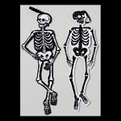 Cheap Wholesale Discount ALL SIZES - FAKE Human Remains, Anatomy, Animals, Replica, Model, SKELETONS, Skelatons, LIFE SIZE, SMALLER LESS THAN Than Life Size, Dog, Cat, Pet, Spider, Bird, Skeleton, Skeletal, Halloween Decorations, Haunted House Props