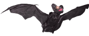 Animated flying black bat toy with fabric wings & lifelike movement is a great prop for your haunted scene! Turn it on and the eyes light up and flaps its wings, continuously flying in smooth circles for you. Nearly 3-feet wide!