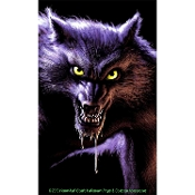 WOWindow WEREWOLF POSTER Halloween Window Decoration 3 x 5-Foot - Large backlit plastic poster is illuminated just by your household lamps! Durable plastic film with colorful fade-resistant inks, WOW window is reusable year after year. Made in USA!